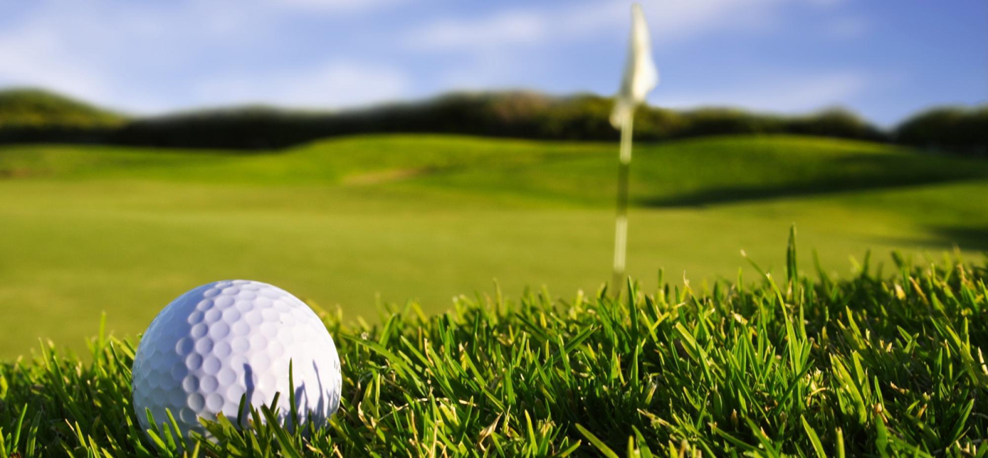 Картинки по запросу гольф